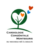 logo CCMontsouris